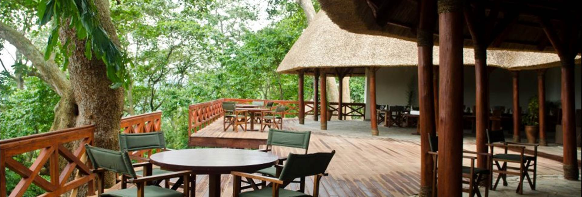Luxury Gorilla Safari Lodges in Congo